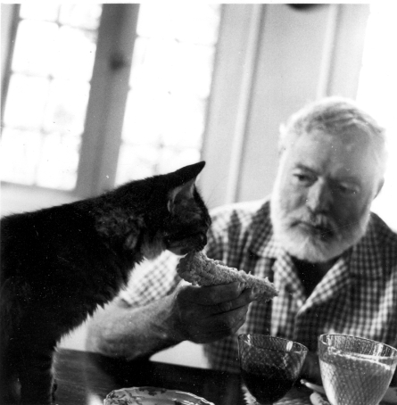 "Ernest Hemingway with his cat, Christobal Colon, at his home, Finca Vigia in Cuba. Please credit ""Ernest Hemingway Collection/John F. Kennedy Presidential Library and Museum, Boston"""