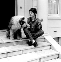 Paul McCartney and his dog Matha