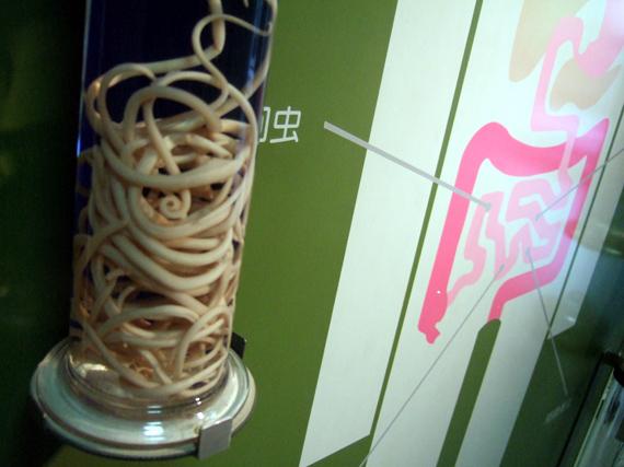 parasite_museum2