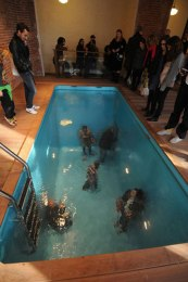 fake-swimming-pool-illusion-leandro-erlich-5