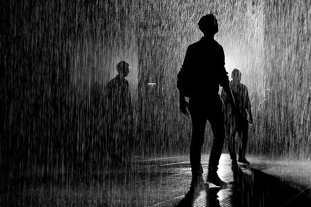 Rain Room 24
