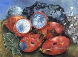 3-pitahayas-frida-kahlo-still-life-decor