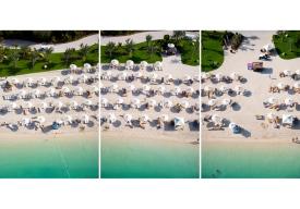 palm-island-triptych