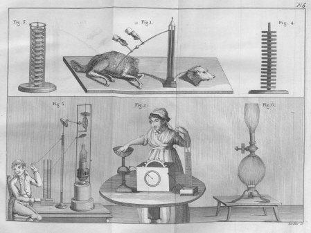 experiments_with_various_devices_essai_th_orique_et_exp_rimental_sur_le_galvanisme_1804
