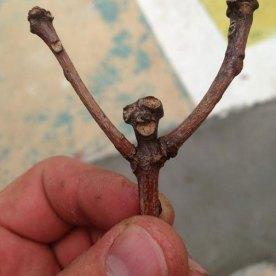 happy-stick
