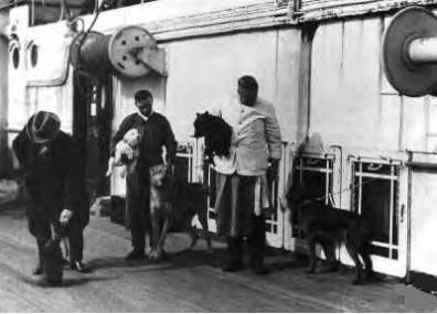 Το πλήρωμα βγάζει βόλτα τα σκυλιά στο κατάστρωμα του Τιτανικού