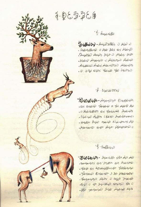 Luigi-_Serafini_Codex_Seraphinianus_1