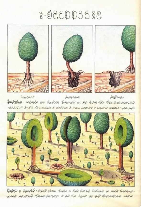 Luigi-_Serafini_Codex_Seraphinianus_6