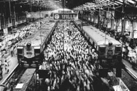 salgado-train