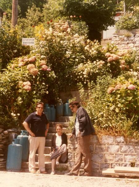 pelion 1986