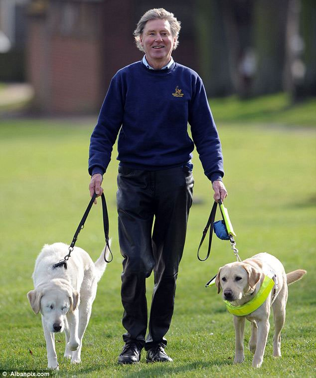 guide-dog-loses-sight-so-owner-gets-a-new-guide-dog-for-both-of-them-3