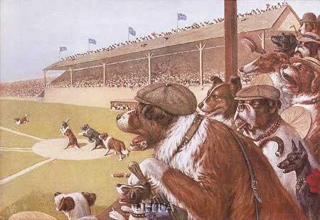 dogs-baseball1