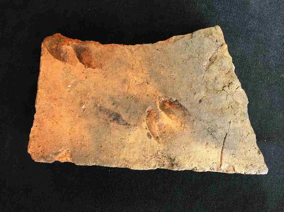 Roman-tile-sheep-goat-prints
