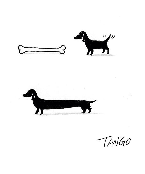 funny-minimal-animal-illustrations-shanghai-tango-3