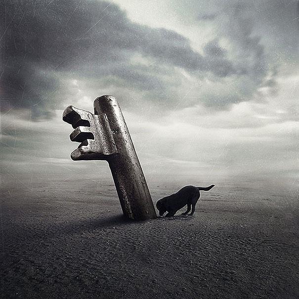 surreal-photoshop-images-shelter-animals-sarolta-ban-4