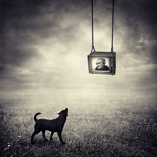 surreal-photoshop-images-shelter-animals-sarolta-ban-5
