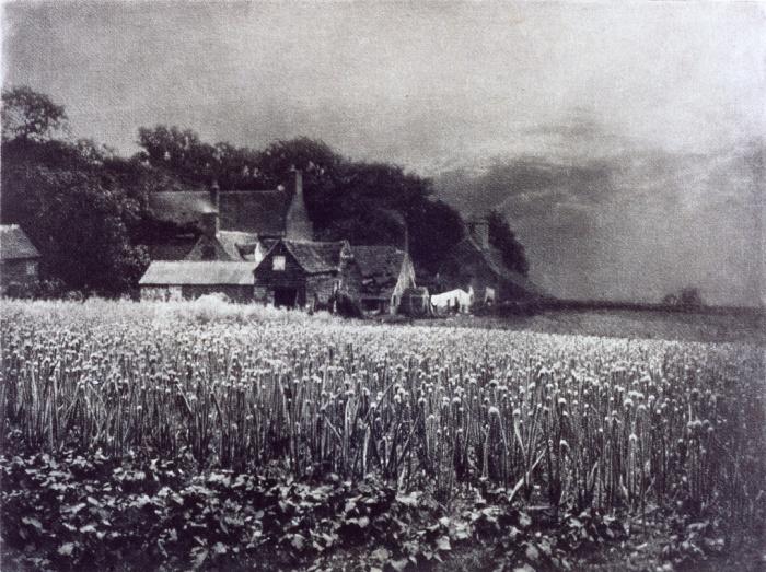 Ο αγρός με τα κρεμμύδια, 1890, Τζορτζ Ντέιβιντσον (George Davidson). Αυτό το ιμπρεσιονιστικό τοπίο τραβήχτηκε με pinhole camera (φωτογραφική μηχανή οπής). Αξίζει να σημειωθεί ότι αργότερα ο Ντέιβιντσον έγινε εκατομμυριούχος επενδύοντας στην εταιρεία Eastman Kodak.
