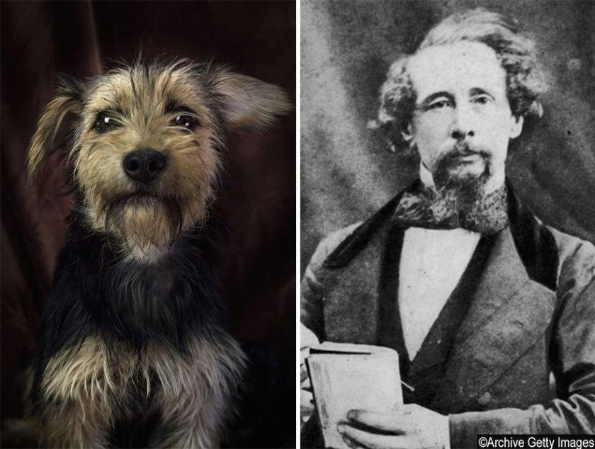poetic-dogs-dan-bannino-12