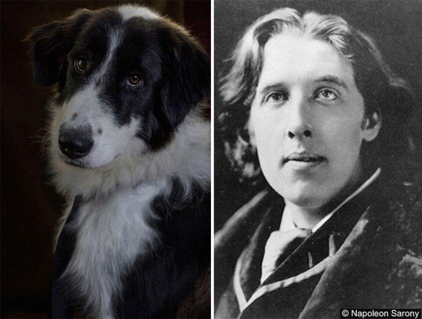 poetic-dogs-dan-bannino-13