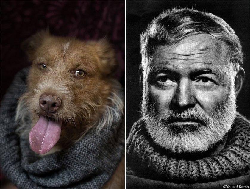 poetic-dogs-dan-bannino-8