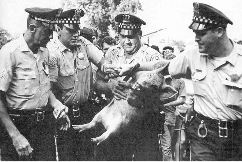 723352597-Cops_with_Pigasus_The_Immortal