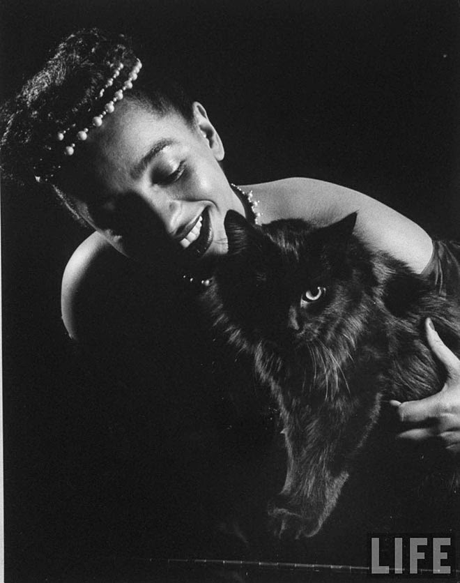 Blackie, Gjon Mili's Cat (11)