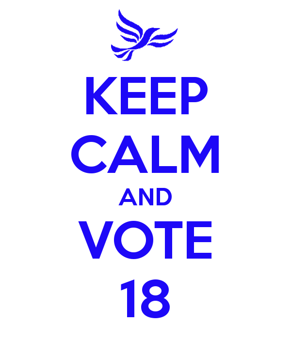 keep-calm-and-vote-18
