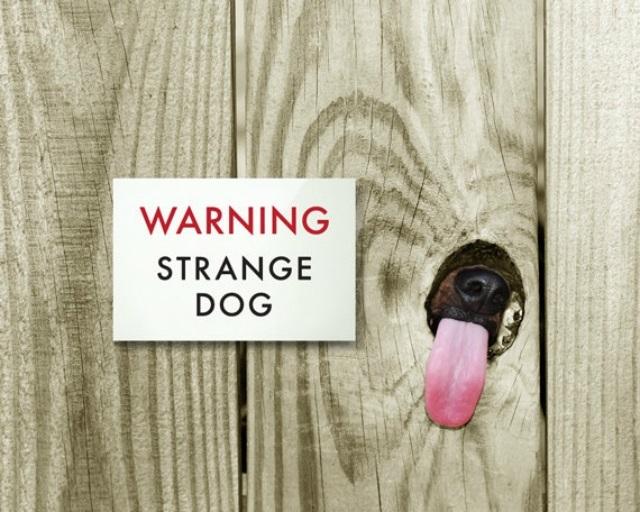 """Αποτέλεσμα εικόνας για """"Προσοχή Σκύλος"""""""