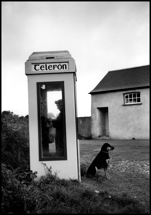 IRELAND. Shanagarry. 1982.