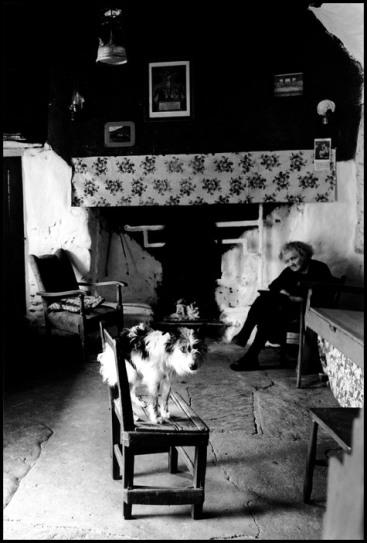Irish Countryside. 1962.