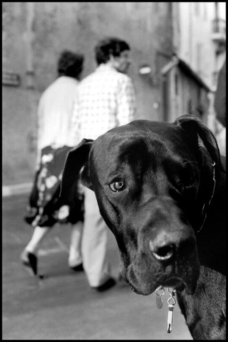 FRANCE. St. Tropez. 1979.