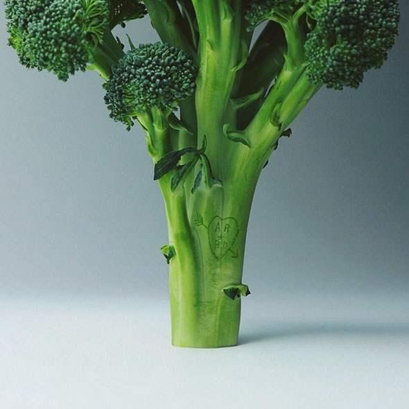 brock-davis-broccoli