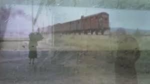 Treno 8