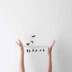 photo07handbirds