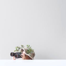 photography18