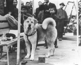 hachiko-with-townspeople