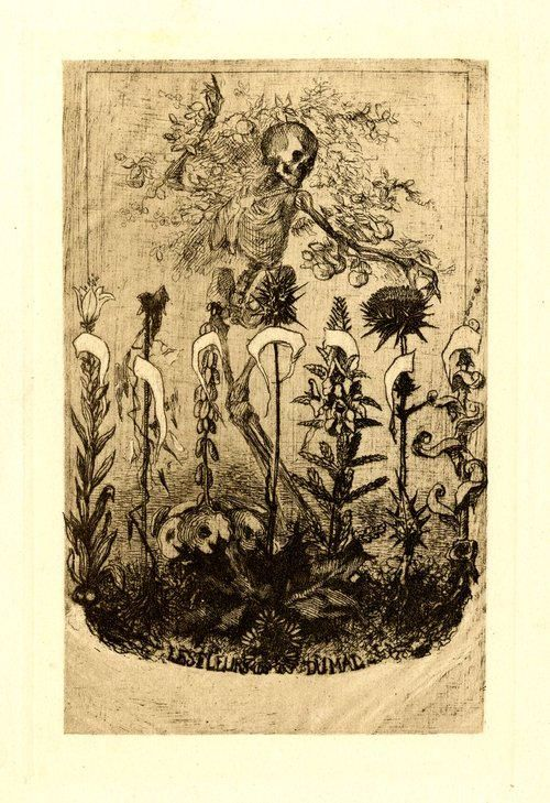 Unpublished frontispiece for 'Les Fleurs du Mal' by Baudelaire. Félix Bracquemond