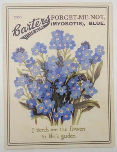 Κράνη, μυοσωτίδες, άνθη τωντάφων