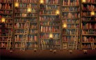 Old_book_library_ladder_bookshelf_books_desktop_1920x1200_wallpaper-7274 COVER