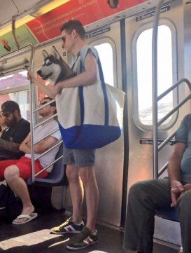 man-with-giant-dog-tote-bag-new-york-subway-1a