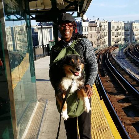 This-is-how-Beowulf-Grendel-get-around-NYC-The-law-says-dogs-on-the-MTA-must-be-carried-in-a-bag-so-thats-just-what-we-do