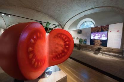 RTEmagicC_Museo_del_Pomodoro_-_Collecchio_PR__Foto_L._Rossi__DSC1751.jpg