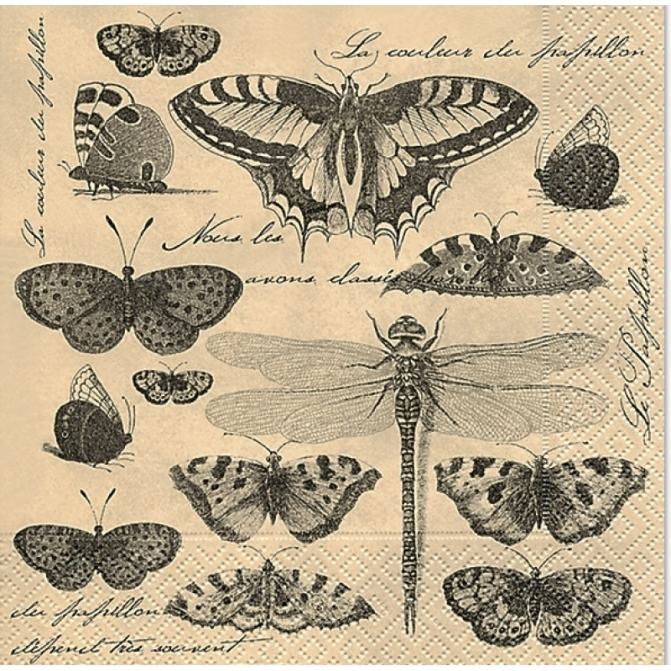 Schmetterling-Butter-fly-Mail-Collection-Vintage