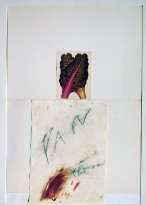 8-cy-twombly-pan