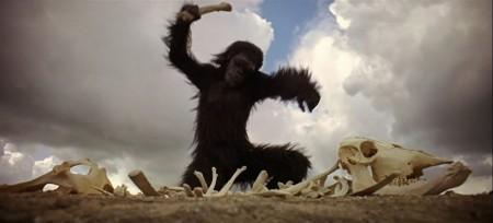 primate-ancestor