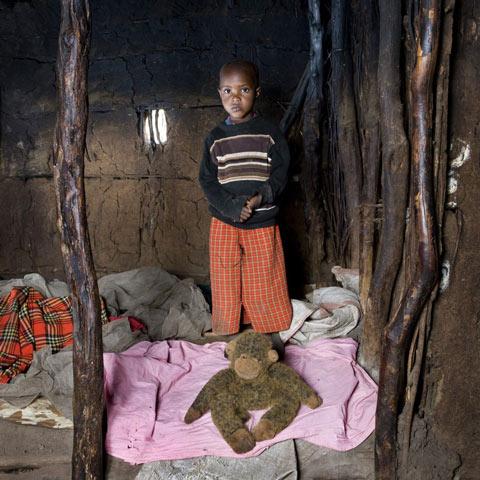 Tangawizi – Keekorok, Κένια