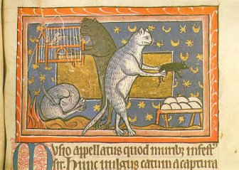 manuscript_illustration2