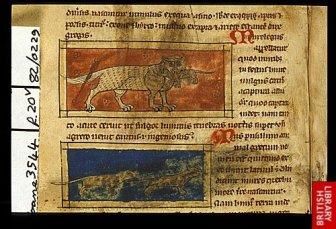manuscript_illustration3